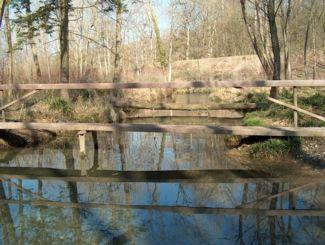 Das Grundwasser - unser Trinkwasserspeicher