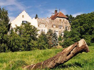 Das untere Wappenzeichen die Burg - Schloss Wellenberg